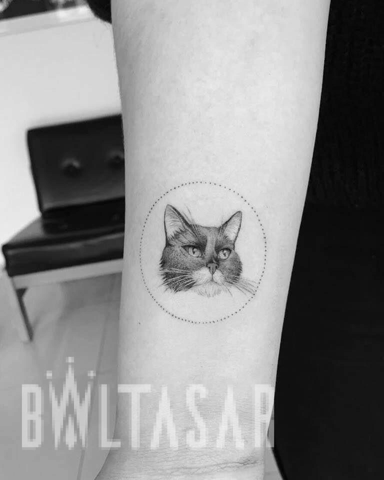 Micro-realismoTattoo de Gato