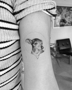 Tattoo Micro Realismo de Perro Pinsher en Baltasar Studio Madrid