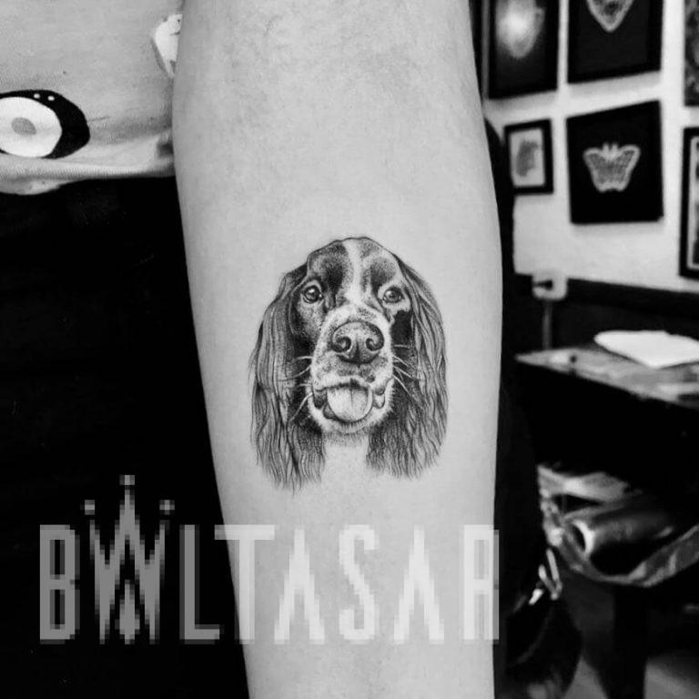 Micro-realismo Mascota, Baltasar Madrid Studio