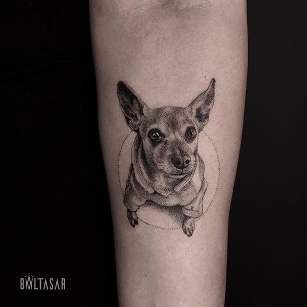 Tatuaje chow chow microrealista en Madrid