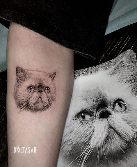Gtatuaje de gato himalayo microrealista en madrid